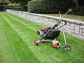 Picture of lawn mower and tools